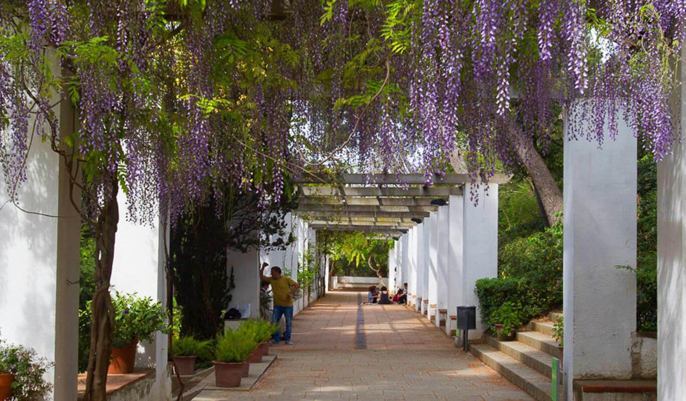 Una ruta por los jardines con m s encanto de barcelona - Jardines de barcelona ...